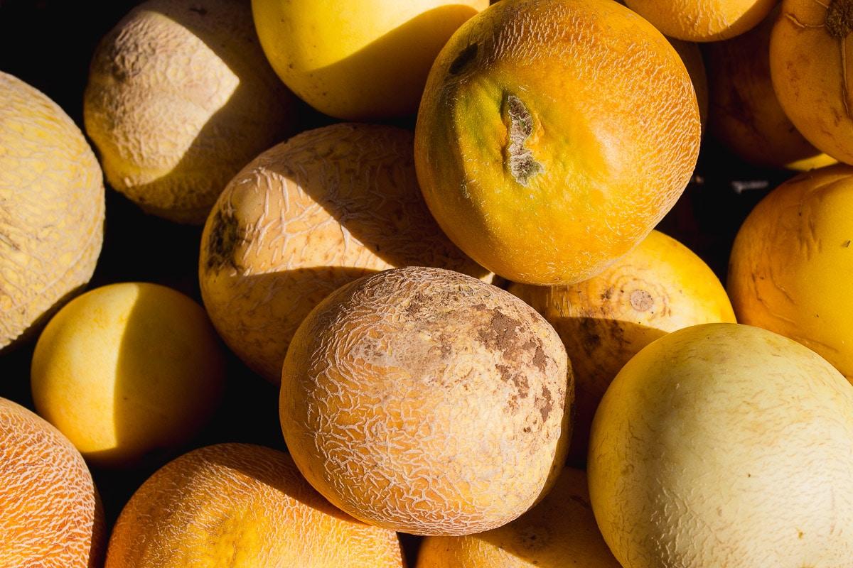 melon lubbock farmers market